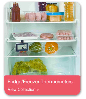 Fridge/Freezer Thermometers